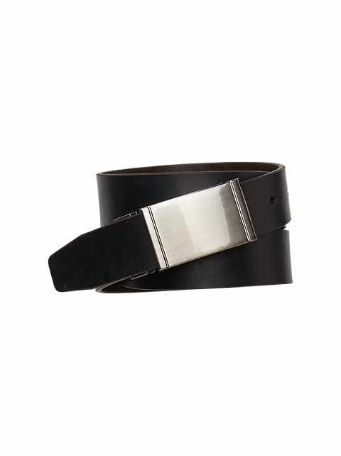 Reversible plaque belt