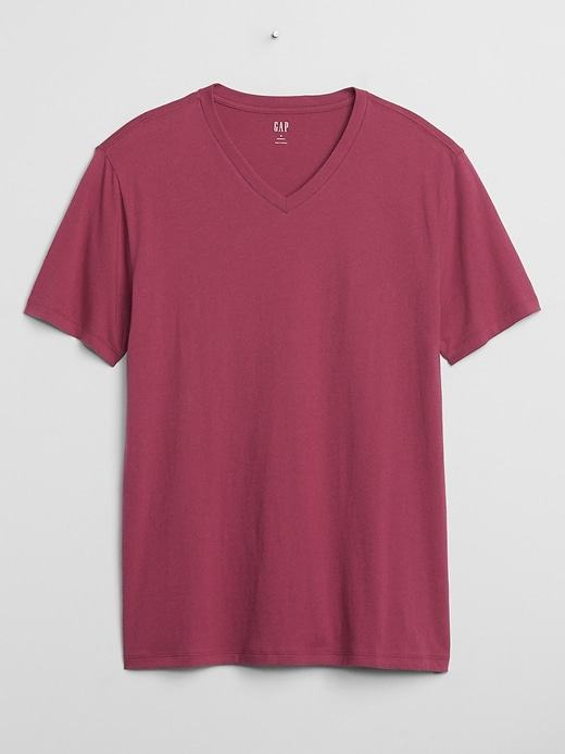 Gap Factory Mens Everyday V-Neck T-Shirt
